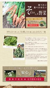 農家からの直送野菜