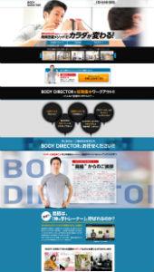 BODY DIRECTOR