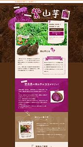 宮古島の[紫山芋]